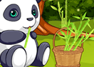 Pet Stars: Playful Panda